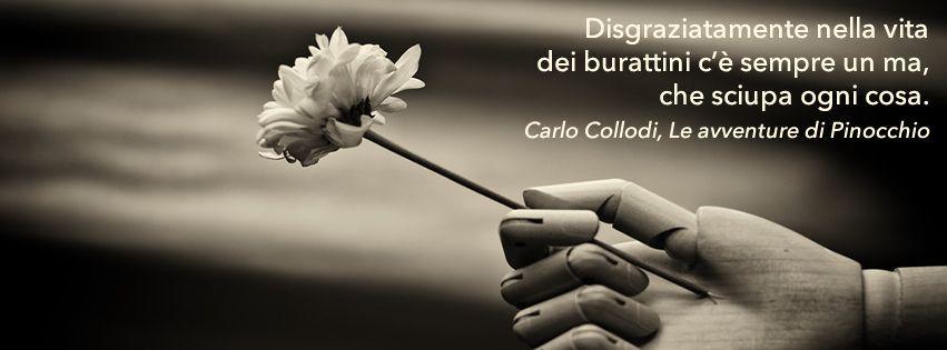 profilo facebook immagine copertina con mano di un burattino che tiene in mano un fiore