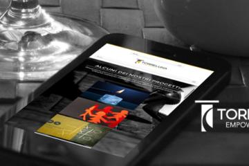 website design Torreluna