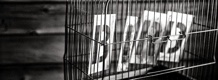 profilo facebook immagine copertina con la parola bird dentro una gabbia