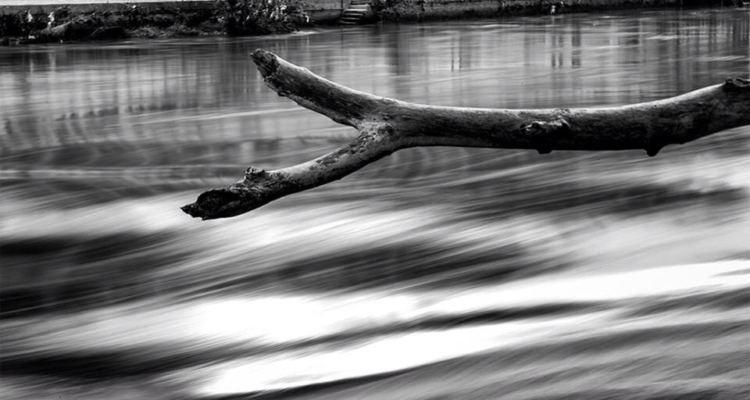 ramo in sospensione su un fiume che scorre